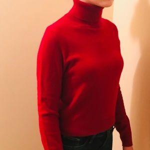 Sweaters - Maroon Turtleneck Sweater